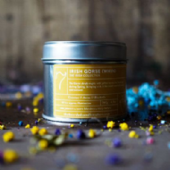 The Bearded Candle Makers '07 Irish Gorse Wind'